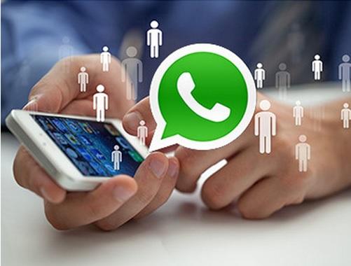 Think Data cria Inteligência Artificial para a localização via WhatsApp